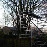Bomen snoeien of verwijderen