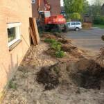 Opschonen van de bestaande tuin